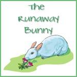 The Runaway Bunny copy