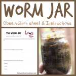 Worm-Jar-instructions-and-observation-sheet.png