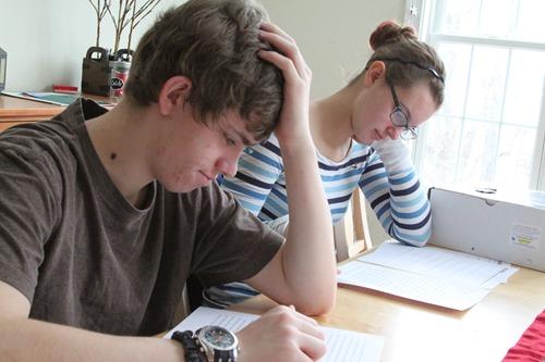 Homeschool Week in Review-17