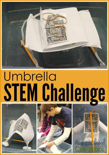 Umbrella STEM Challenge - create a shelter to keep a tissue dry