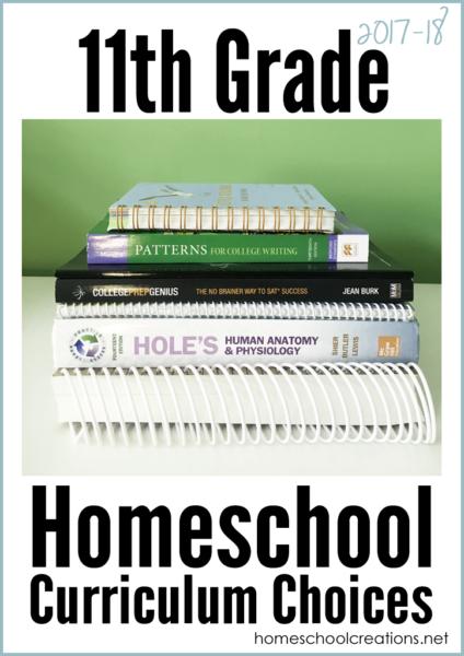 11th Grade Homeschool Curriculum Choices