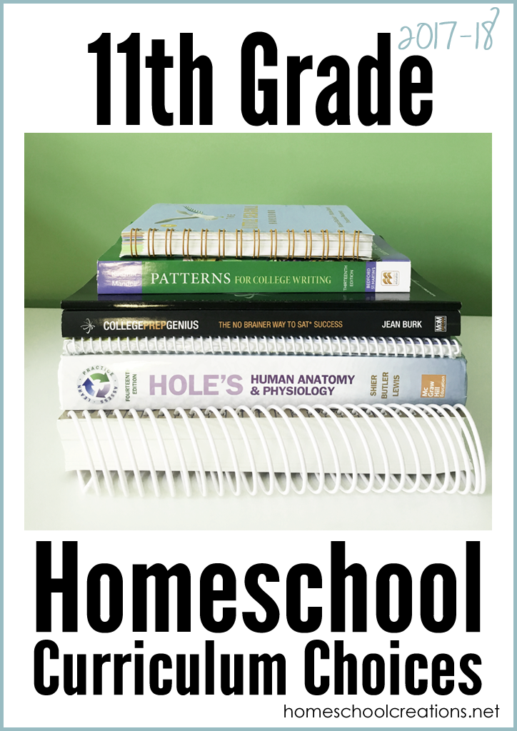 11th Grade Homeschool Curriculum Choices