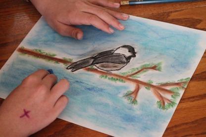 Birds pastels-9