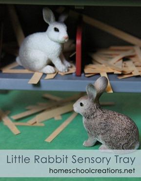 The Little Rabbit Sensory Bin