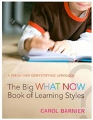 The Big What Now Book of Learning Styles