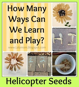 Lalymom Helicopter Seed Activities for kids
