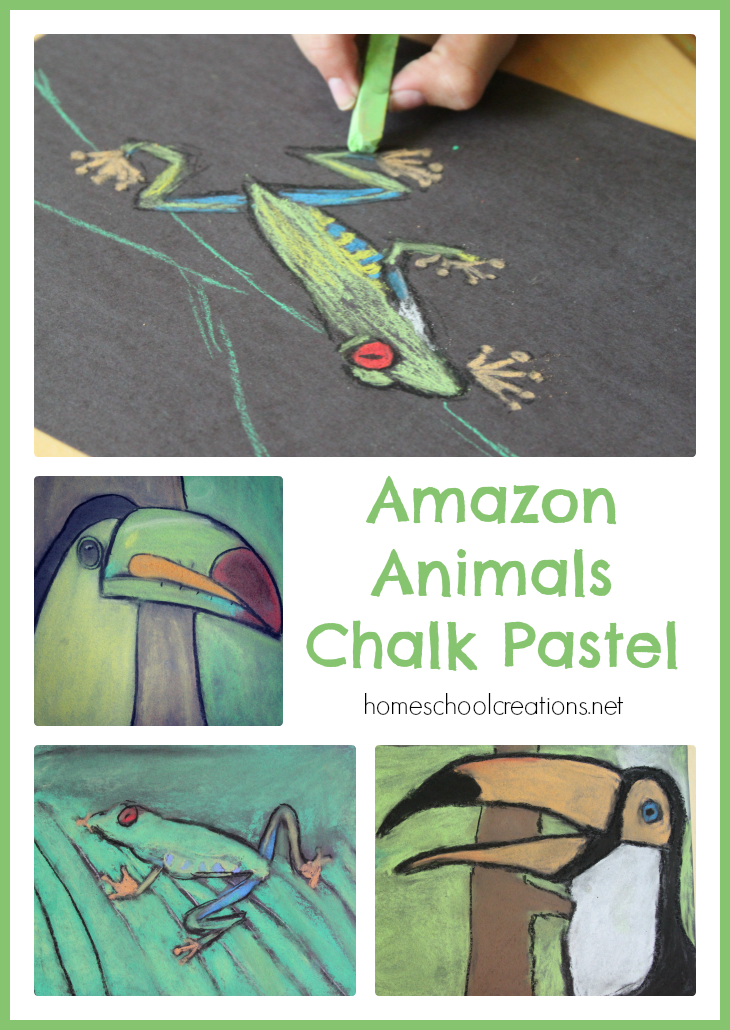 Amazon Animals Chalk Pastel