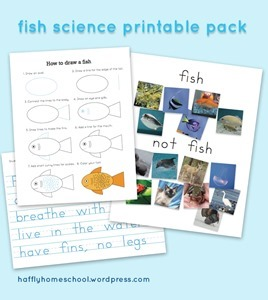 Homeschool Preschool - Fish Science