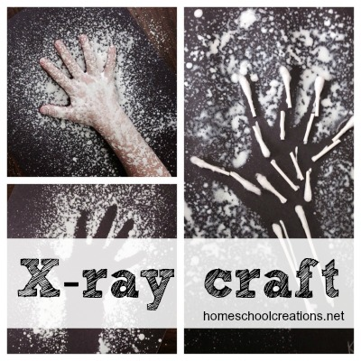 Xray craft for kids