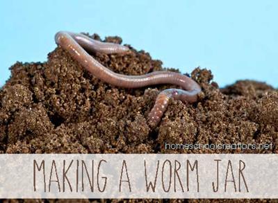 How to make a worm jar