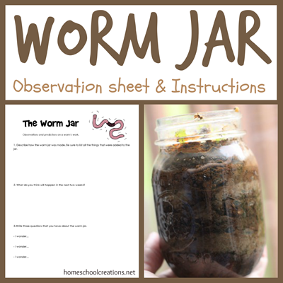 Worm Jar instructions and observation sheet