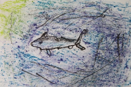 Shark Chalk Pastels art time-12