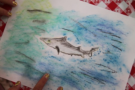 Shark Chalk Pastels art time-7