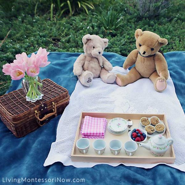 Items-Used-for-a-Healthy-and-Courteous-Teddy-Bear-Picnic