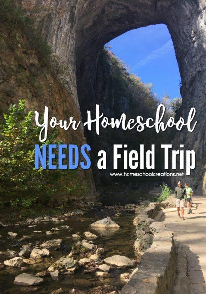 your-homeschool-needs-a-field-trip