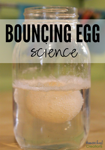 bouncing egg science experiment from Homeschool Creations