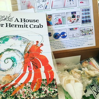 house for hermit crab Ivy Kid kit