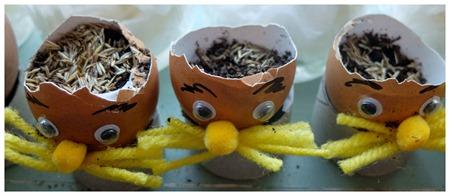 seed-plant-eggshel-lorax-children