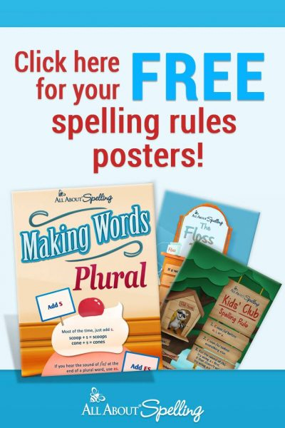spelling rules poster